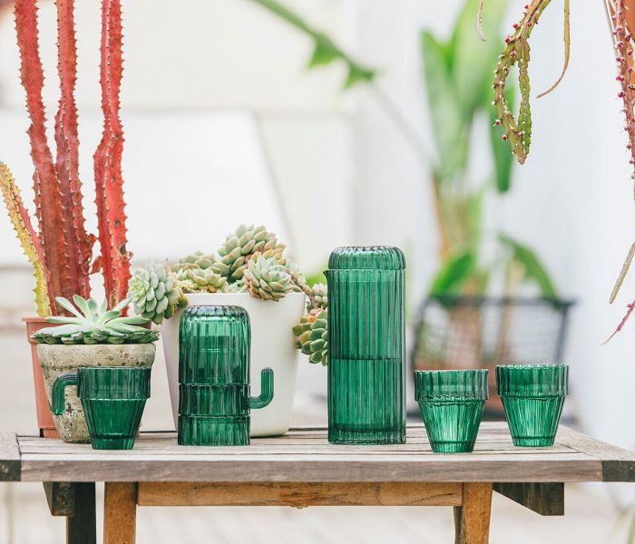 Hebben! DOIY Saguaro cactus glazen.