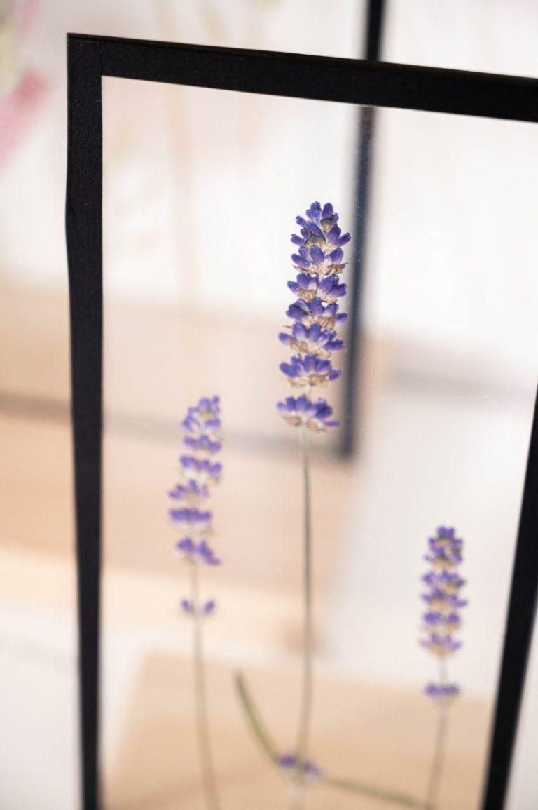 Productfotografie voor By Manoa | Handgemaakte lijstjes van glas met gedroogde bloemen.